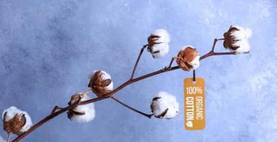 Pourquoi acheter du coton bio et équitable ? Où acheter des vêtements en coton bio ?